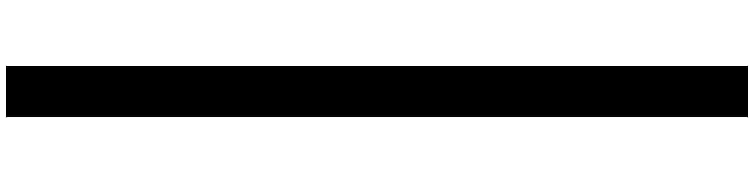 Ski Aluflex Écléctique