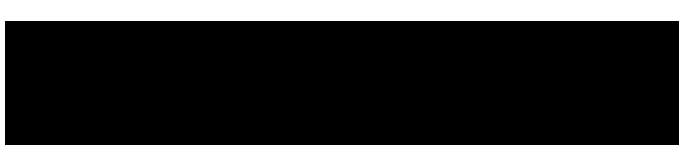 Snowbooard Fiberflex Gamme G